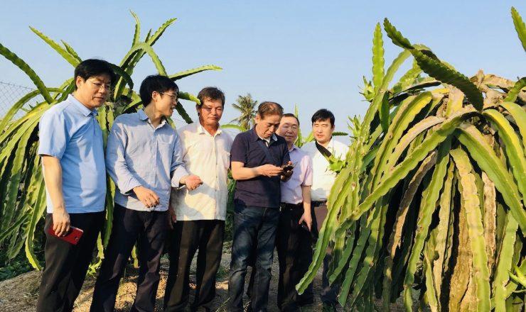 Foslleaの農業事業
